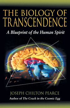 Transcendence by Penney Peirce